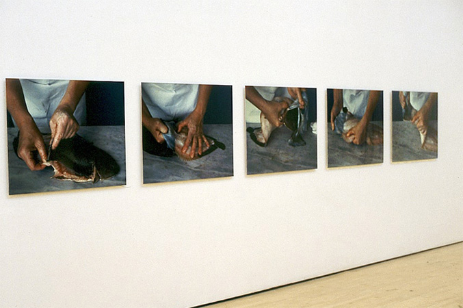 Installation View, Five Cibachrome colour prints mounted on alluminium under acrylic glass, each 70 x 90 cm